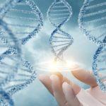 La epigenética podría ayudar a entender mejor la génesis del cáncer