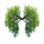 Cambios positivos en la espirografía