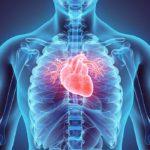 La prevención es el mejor tratamiento de la hipertrigliceridemia