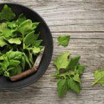 Oxalato y dieta, ¿Cómo prevenir las litiasis renales?