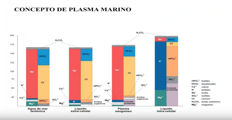 plasma-marino-y-liquido-extra-celular