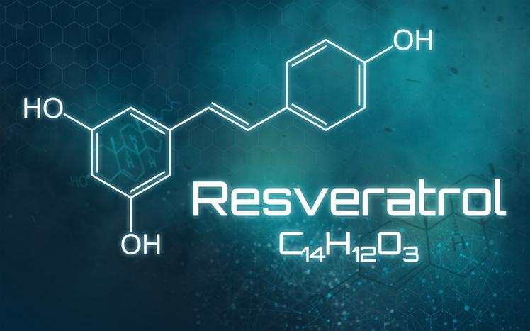 resveratrol que es