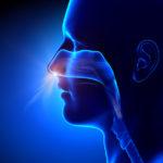¿En qué casos se habla de rinitis perenne?