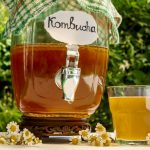 Bebidas probióticas: Té Kombucha