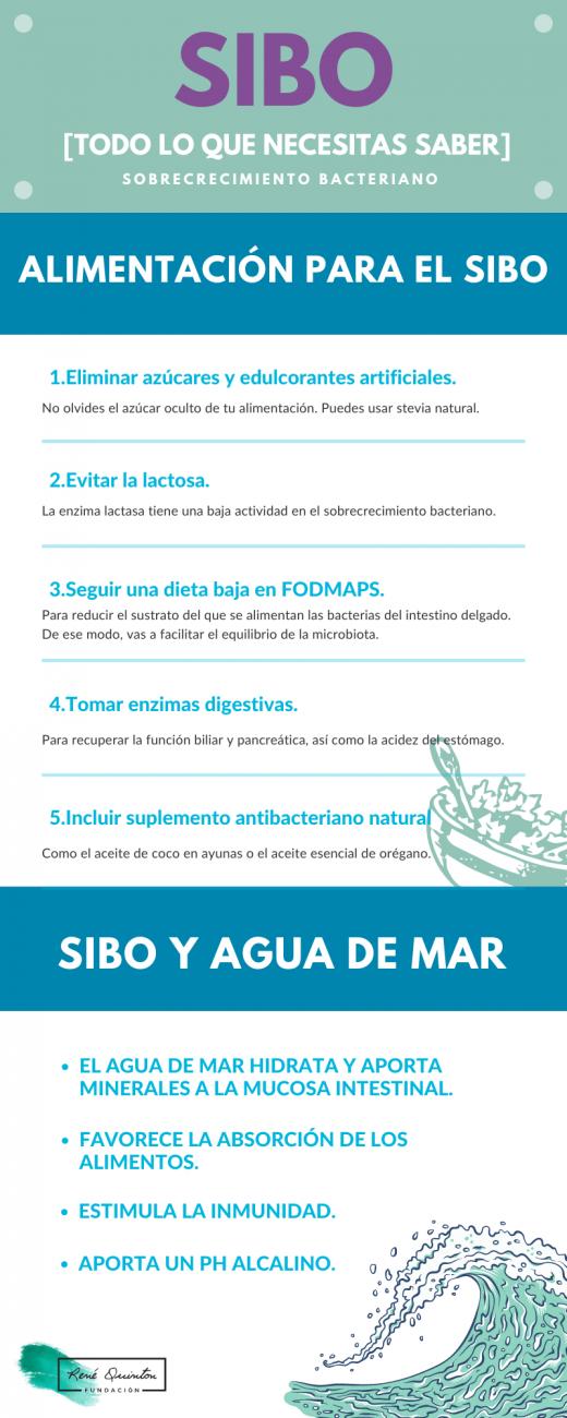 Infografía SIBO