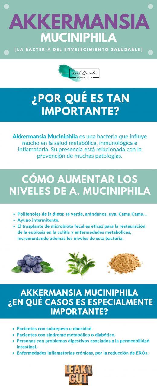 Akkermansia Muciniphila_infografia