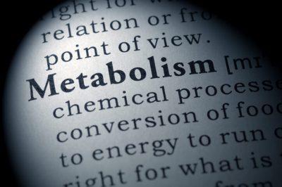cómo conseguir flexibilidad metabólica